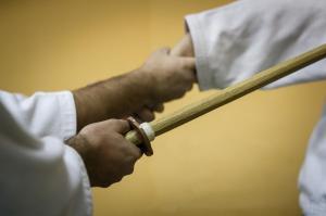 aikido-skola-vidikovac-seishin-zemun-dojo-klub 2